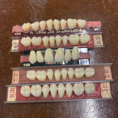 Vintage Denture Teeth