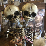 Conjoined Twin Skeleton Replica - Curious Nature
