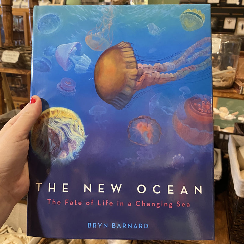 The New Ocean by Bryn Barnard - Curious Nature