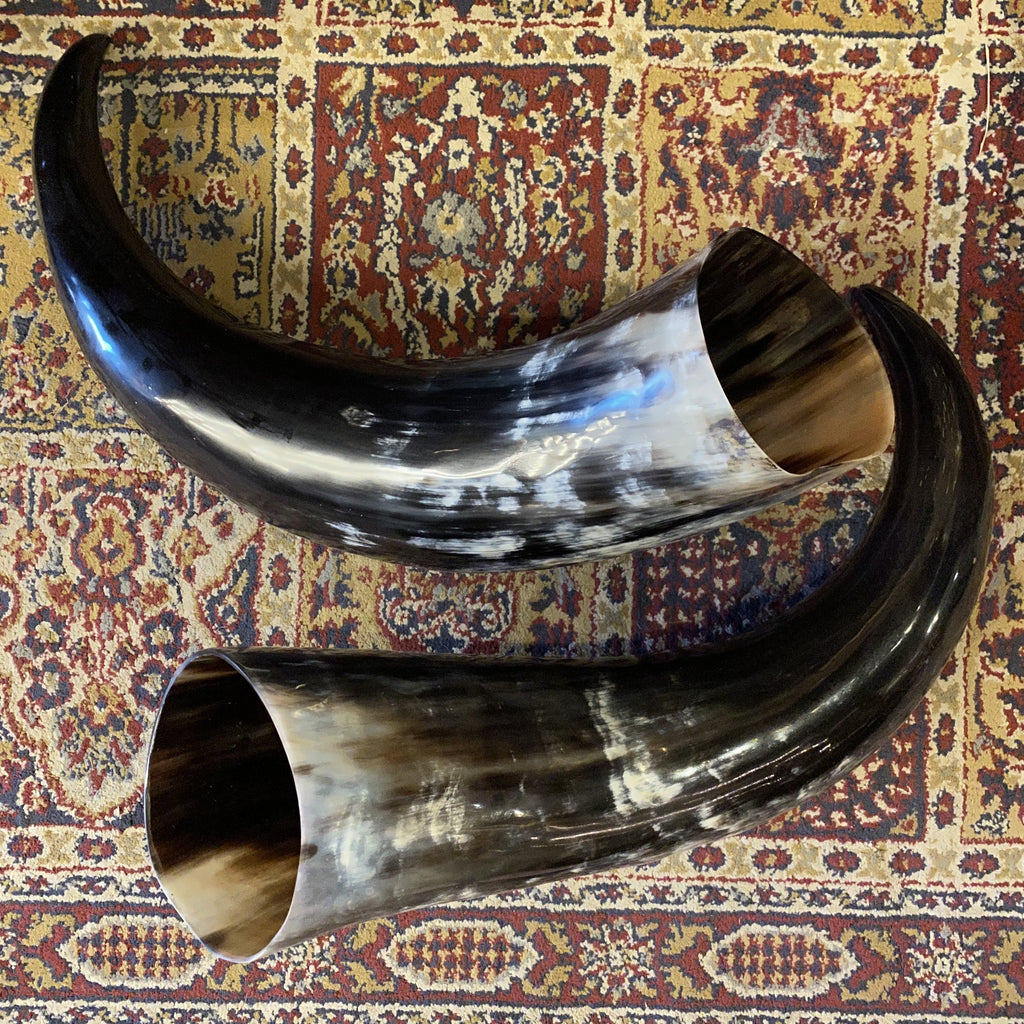 Set of 2 Polished Indian Water Buffalo Horns