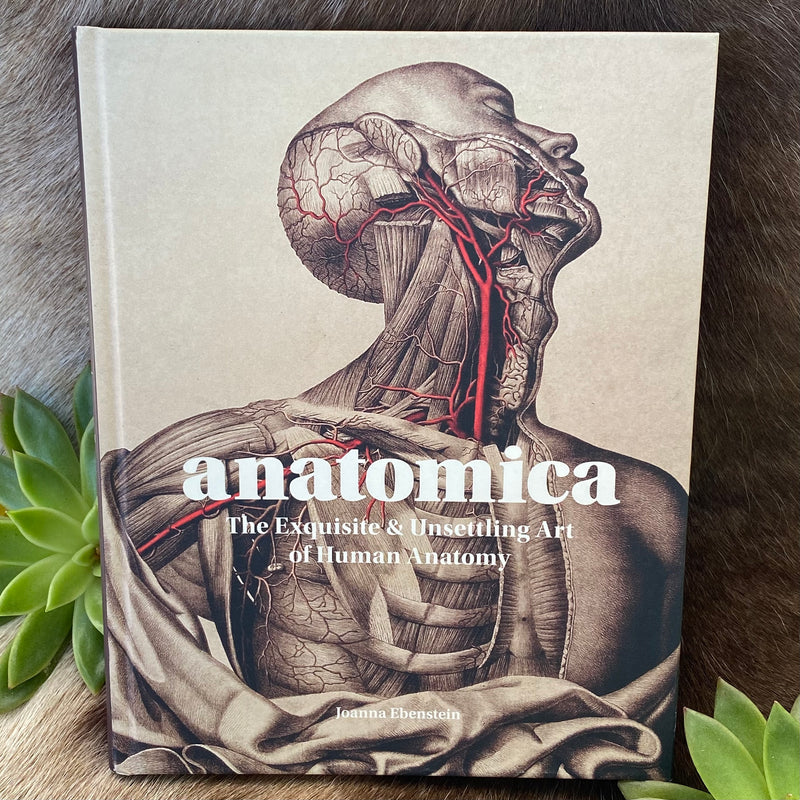 Anatomica: The Exquisite and Unsettling Art of Human Anatomy by Joanna Ebenstein