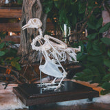 Articulated Pigeon Skeleton