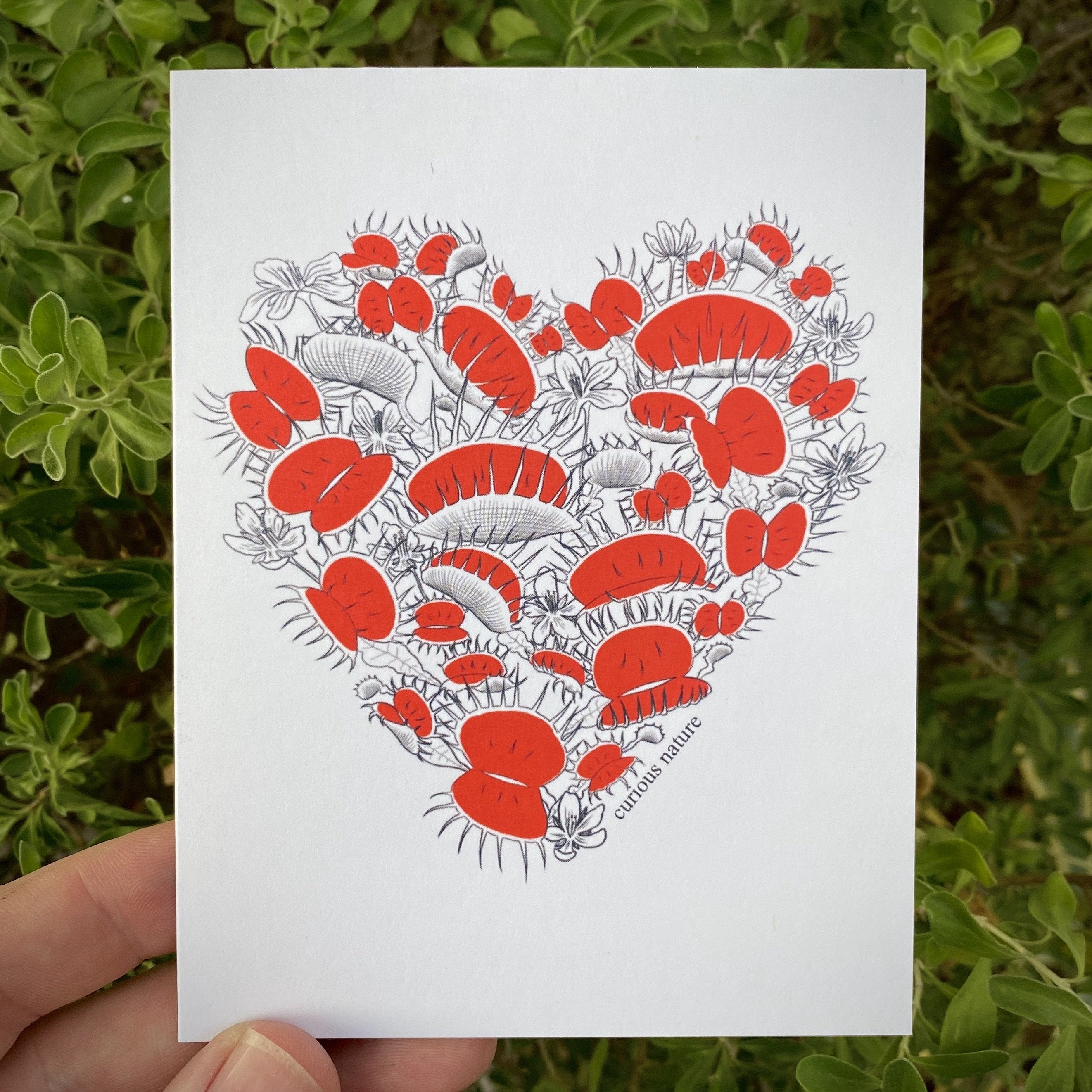 Venus Flytrap Heart Greeting Card - Curious Nature