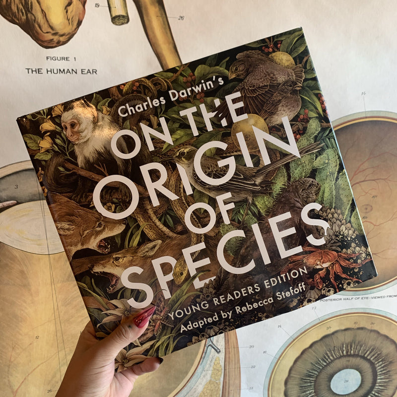 On the Origin of Species: Young Readers Edition Adapted By Rebecca Steffof - Curious Nature