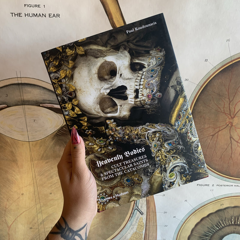 Heavenly Bodies: Cult Treasures & Spectacular Saints from the Catacombs By Paul Koudounaris - Curious Nature