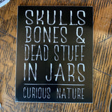 Vinyl Curious Nature Stickers