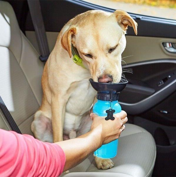 Your Pet's Favorite No Spill Dog Water Mug