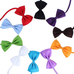 Cute Bow Tie Pets Butterfly Type Necktie