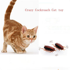 Cats Cockroach Toy