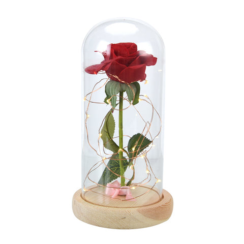 Beauty and the Beast Red Rose in a Glass Dome