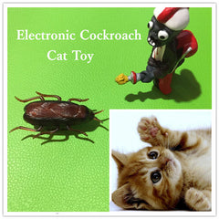 Electronic Cockroach Cat Toy - BoardwalkBuy - 4