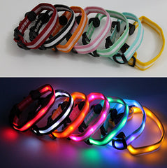 LED Dog Collar - Assorted Colors and Sizes - BoardwalkBuy - 4