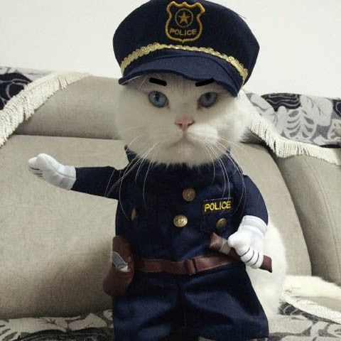Pet Cat Dress Uniform Suit Police Clothes Hat Boardwalkbuy