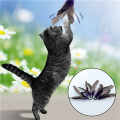 Cat Feather  Toy Color Random