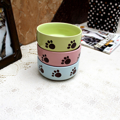 Cat Feeding bowl Color Random