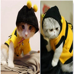 Cute Animal Bee  Pet  Clothing