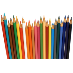 Adult Pencil Crayons 12 Colors - BoardwalkBuy - 2