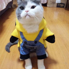 Minions Cat Dress Transformation Clothes
