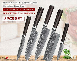 Damascus Knives Set - 67 Layer Damascus Steel