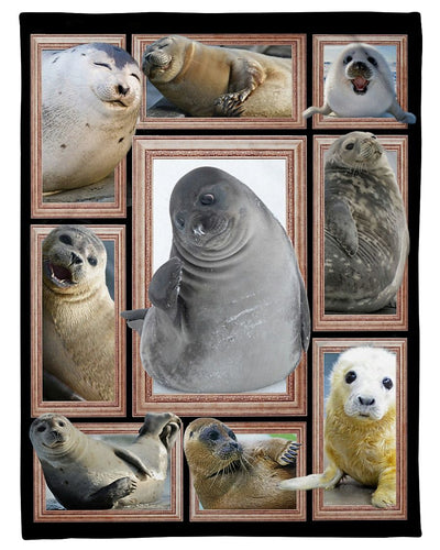 Seal Cute Seals GS-CL-DT1810