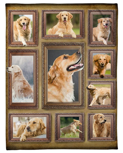 Golden Retriever GS-CL-DT1610
