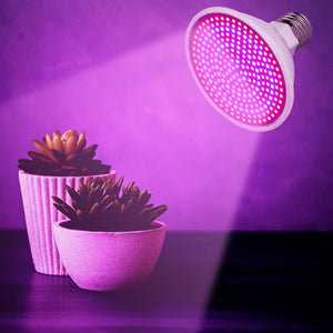LED Grow Lights Full Spectrum Phyto Lamp for Indoor Plants