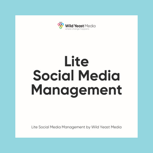 Lite Social Media Management