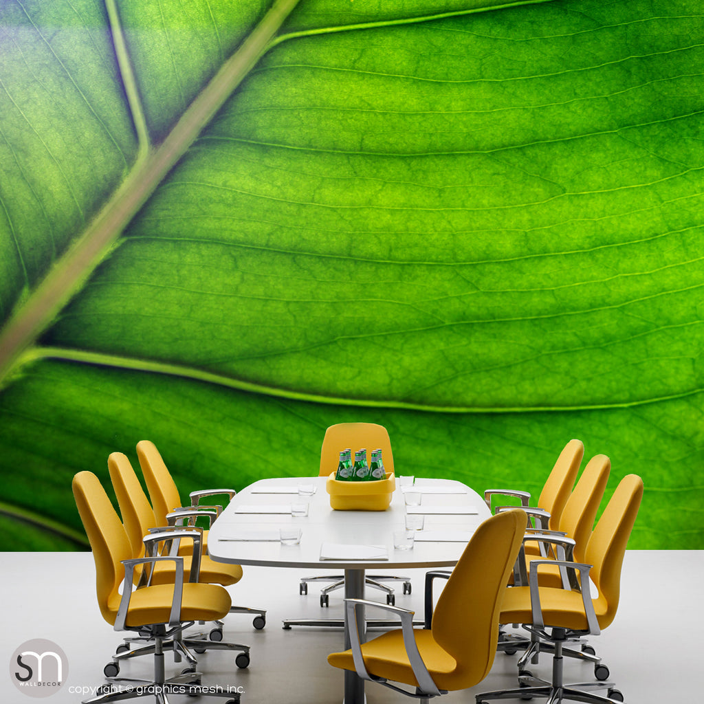 Green leaf wall mural in office