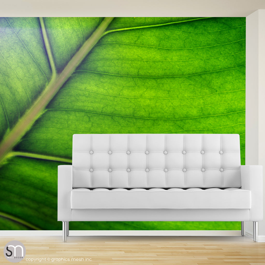 Green leaf wall mural in living room