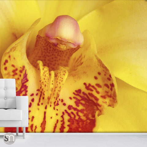 YELLOW FLOWER CLOSEUP - Wall Mural