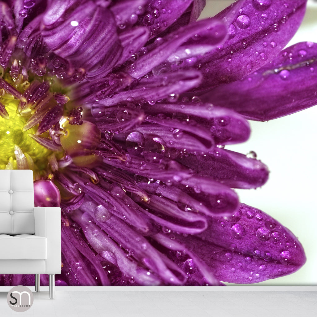 PURPLE FLOWER CLOSEUP - Wall Mural livingroom