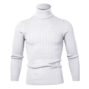 Winter Warm Turtleneck Sweater Men Vintage Tricot Pull Homme Casual Pullovers Male Outwear Slim Knitted Sweater Solid Jumper