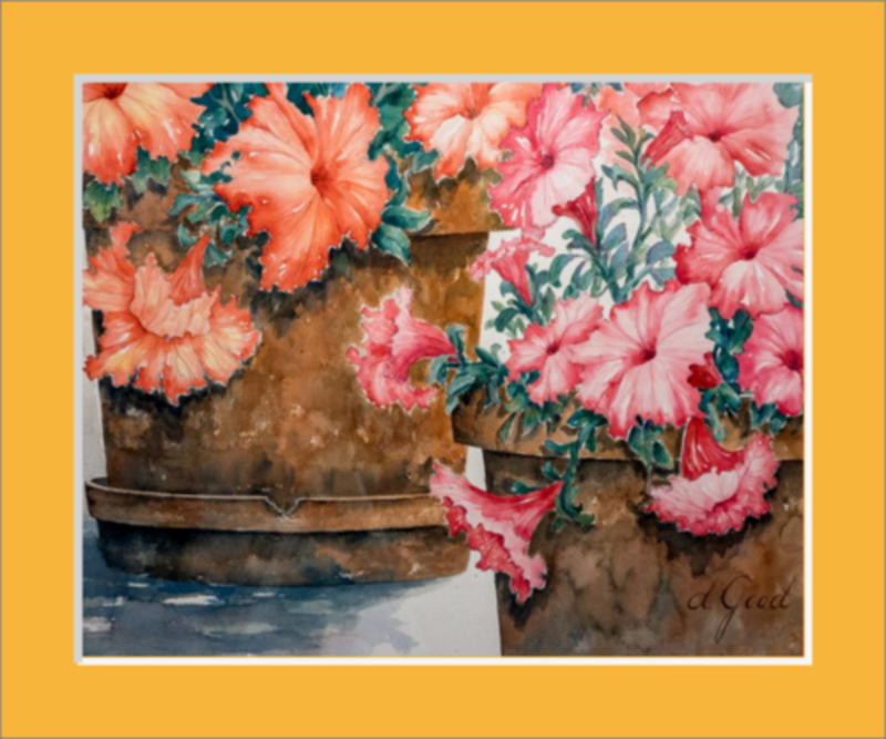 "Potted Petunias Matted Fine Art Paper Prints 10 x 8"" Premium Giclee Paper 1/2"" Extra Border Added Single Mat: Saffron (A4852) 12 x 10"" (window: 10 x 8"") Mfg #: 1-A4852-10 x 8"" Premium Giclee Paper-Rodeo Queen Fine Art-Rodeo Queen Fine Art"