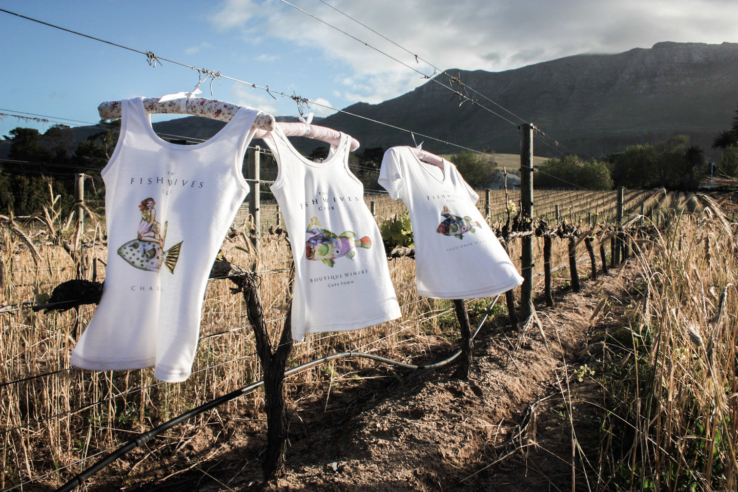 T-shirts hanging in the vineyards