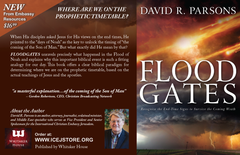 Floodgates by David R. Parsons - Book