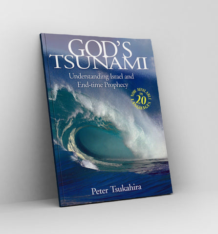 God's Tsunami by Peter Tsukahira - Book