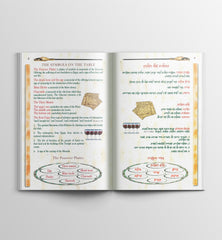Messianic Passover Haggada - book