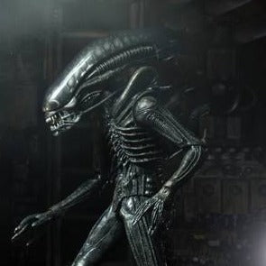 Xenomorph - Alien 40th Anniversary