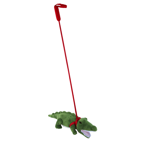Alligator on a Leash