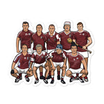 Load image into Gallery viewer, Galway Hurling Sticker