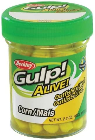 Gulp! Alive! Corn : Artificial Fishing Bait : Sports & Outdoors