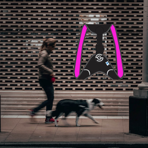 Everyday life can be busy and hectic. When you want to end the day with your dog by walking down the street cool and smooth without any rush, then CASU1  harnesses is the choice.