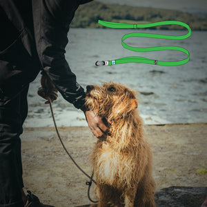 Sustainable dog leash