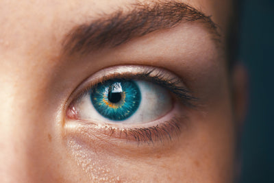 What are the effects of blue light on ocular health and circadian rhythms?