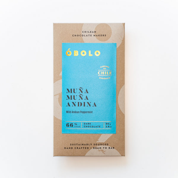 BARRA CHOCOLATE 66% MUÑA MUÑA ANDINA - OBOLO CHOCOLATE