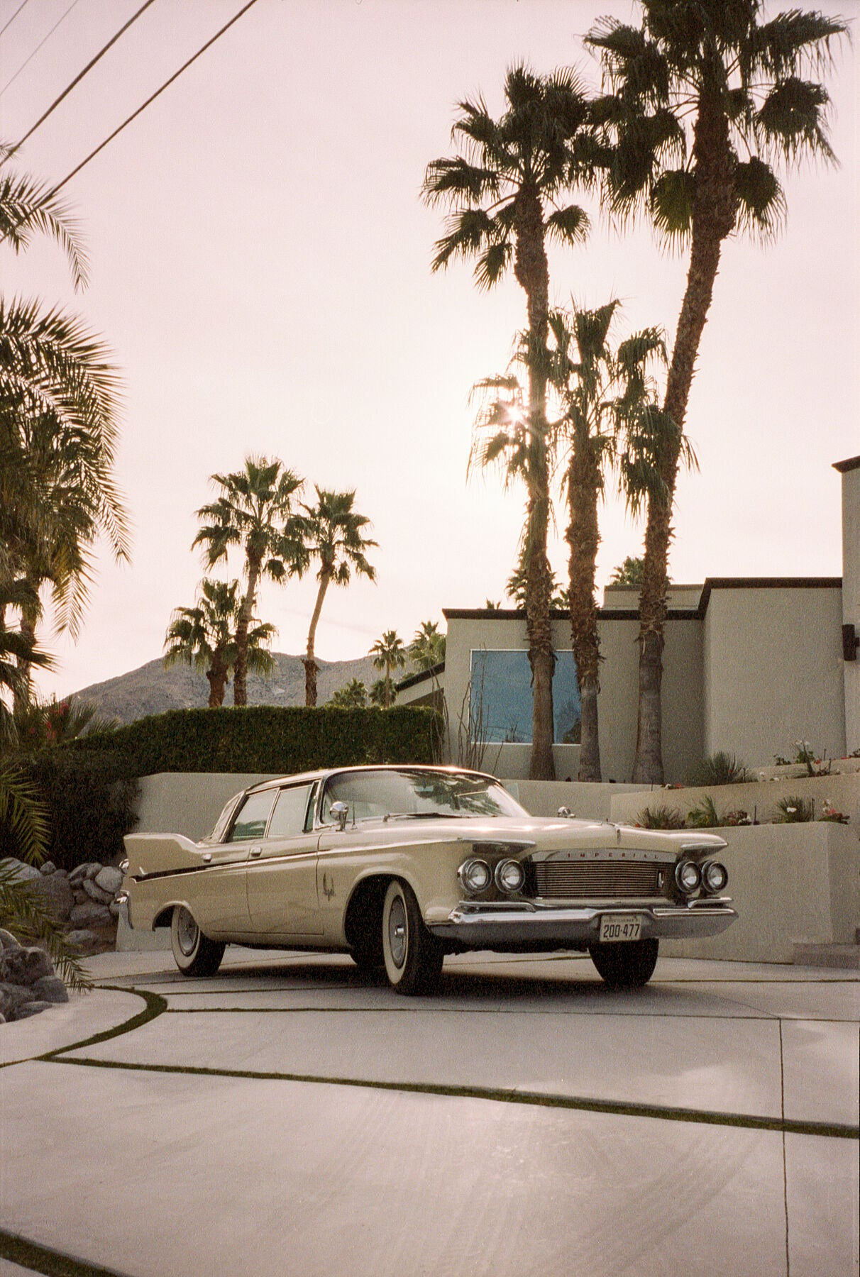 Palm Springs / Billy Bolton