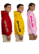 Load image into Gallery viewer, Youth Hooded sweatshirt - Bella/Canvas brand