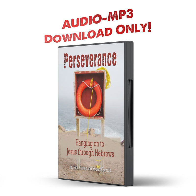 Perseverance: Hanging on to Jesus through Hebrews - Disciple Today Media Store