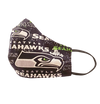 Seattle Seahawks Design