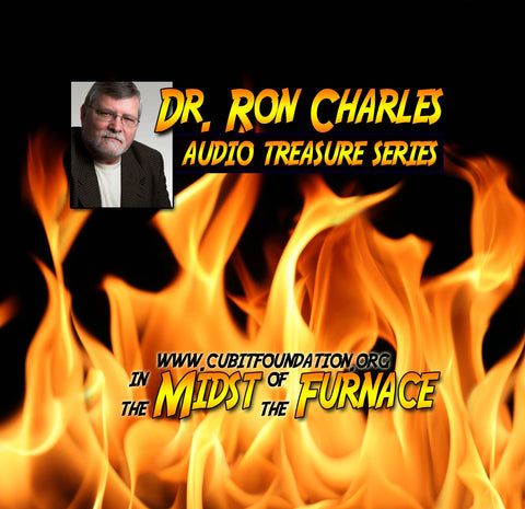 In the Midst of the Furnace